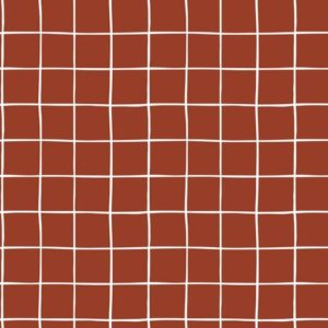 "Soft-Sweat ""GRID""  Gots in  terracotta"