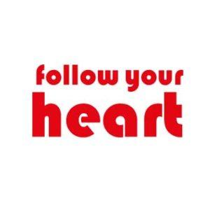 """Bügelbild Plot """"follow your heart"""" 19x9cm  in kirschrot DIY"""